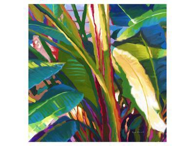 Palm Impressions 08