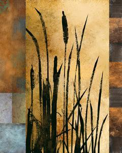 Sawgrass I by Rick Novak