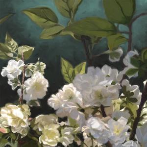 White Roses I by Rick Novak