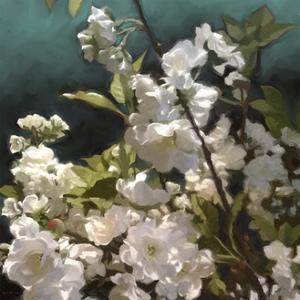 White Roses III by Rick Novak