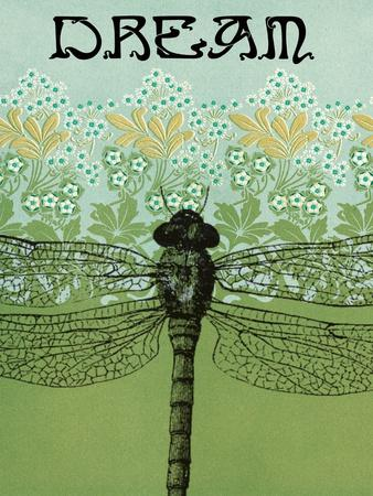 Dream Dragonfly