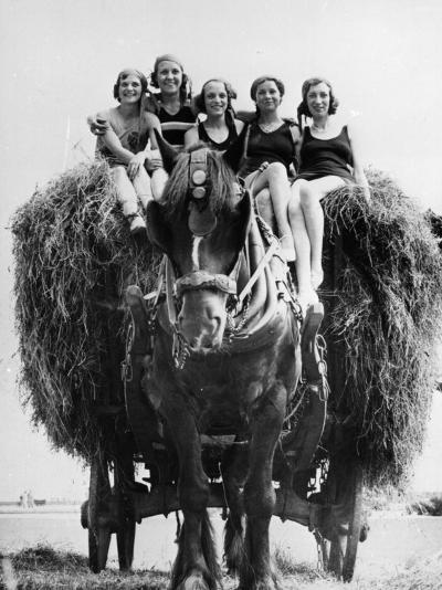 Ride on Hay Cart--Photographic Print