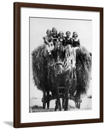 Ride on Hay Cart--Framed Photographic Print