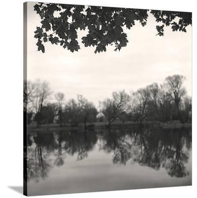 Rideau River, Study #2-Andrew Ren-Stretched Canvas Print