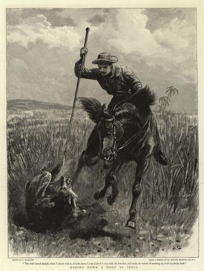 Riding Down a Wolf in India-John Charlton-Giclee Print