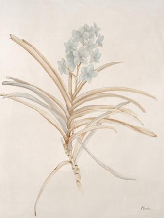 Botanicals Series Blue II by Rikki Drotar