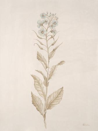 Botanicals Series Blue III by Rikki Drotar