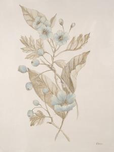 Botanicals Series Blue IV by Rikki Drotar