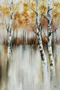 Calm Reverie by Rikki Drotar