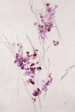 Delicate Blossoms I by Rikki Drotar