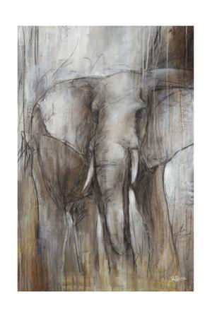 Elephant Study by Rikki Drotar