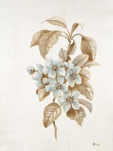 French Botanicals I by Rikki Drotar