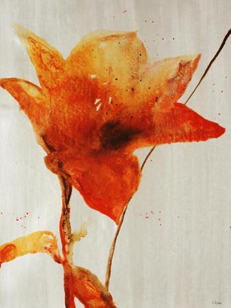 Lillies III by Rikki Drotar
