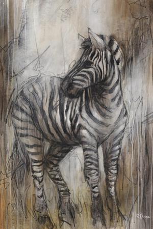 Zebra Study by Rikki Drotar