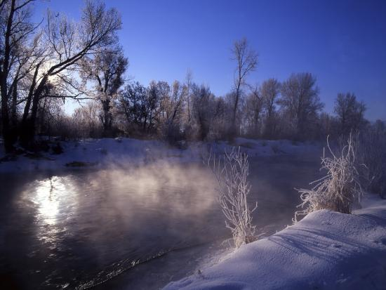 Rimed Trees and Morning Fog on Provo River, Wasatch Mountains, Utah, USA-Howie Garber-Photographic Print