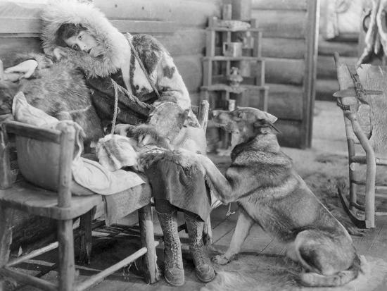 Rin-Tin-Tin (1916-1932)--Giclee Print
