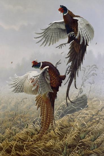 Ringneck Rivalry-Wilhelm Goebel-Giclee Print