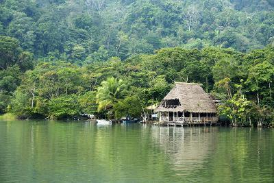 Rio Dulce Riverside View, Rio Dulce National Park, Guatemala-Cindy Miller Hopkins-Photographic Print