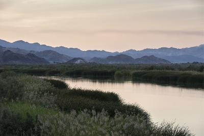 Rio Hardy, a River Tributary in the Colorado River Delta-Bill Hatcher-Photographic Print