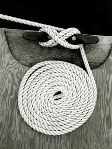 A Coiled Rope on a Dock by Rip Smith
