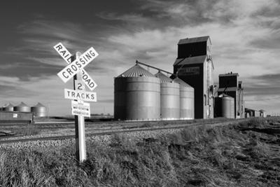 Railroad with Large Grain Stores by Rip Smith
