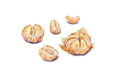 Ripe Watercolor Peeled Tangerines. Set for Design.-MargaritaSh-Art Print