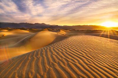 Rippled Sand Dunes at Sunrise-Laura Knauth-Photographic Print