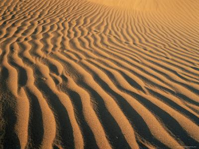 Ripples in the Sand, Sesriem, Namib Naukluft Park, Namibia, Africa-Lee Frost-Photographic Print