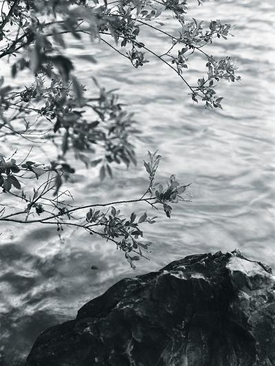 Ripples-Andrew Geiger-Giclee Print