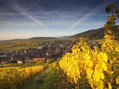 Riquewihr, Alsatian Wine Route, Alsace Region, Haut-Rhin, France-Walter Bibikow-Photographic Print