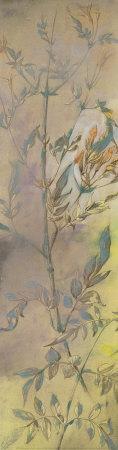https://imgc.artprintimages.com/img/print/rising-garden-ii_u-l-f13rxc0.jpg?p=0