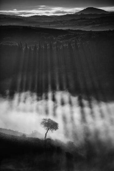 Rising up-Peter Svoboda, MQEP-Photographic Print
