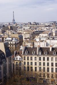 Paris Rooftops II by Rita Crane