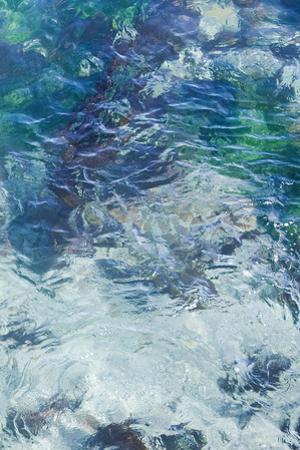 Tide Pool II by Rita Crane