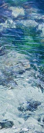 Tide Pool IV