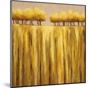 Earth Tones II by Rita Vindedzis