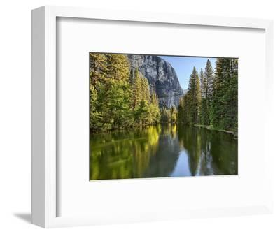 River Flowing Through a Forest, Merced River, Yosemite Valley, Yosemite National Park, Californi...