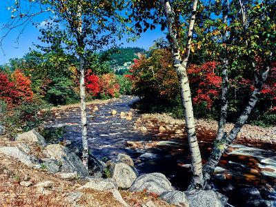 River flowing through a forest, Swift River, Kancamagus Highway, White Mountain National Forest...--Photographic Print