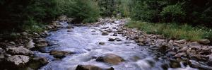 River Flowing Through a Forest, West Branch of Ausable River, Adirondack Mountains, New York State