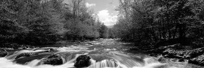 River Flowing Through Rocks in a Forest, Little Pigeon River--Photographic Print