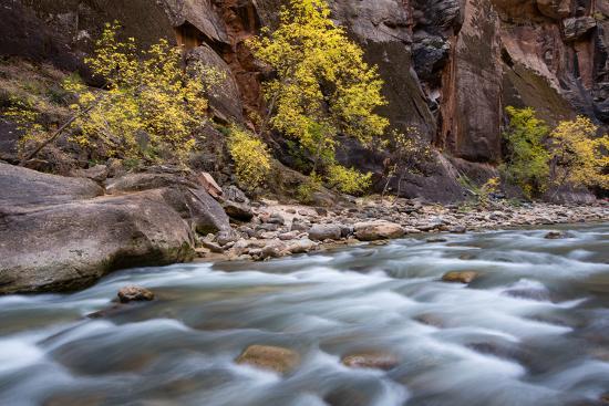 River flowing through rocks, Zion National Park, Utah, USA--Photographic Print