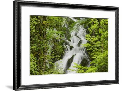 River Le Dessoubre, Cirque De La Consolation, Doubs, France-Rainer Mirau-Framed Photographic Print