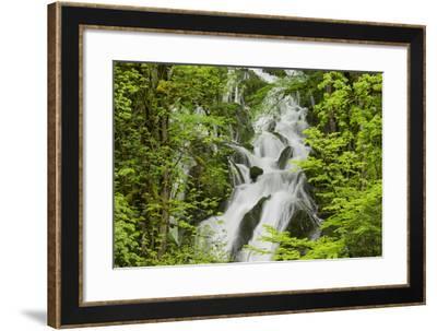 River Le Dessoubre, Cirque De La Consolation, Doubs, France-Rainer Mirau-Framed Photographic Print