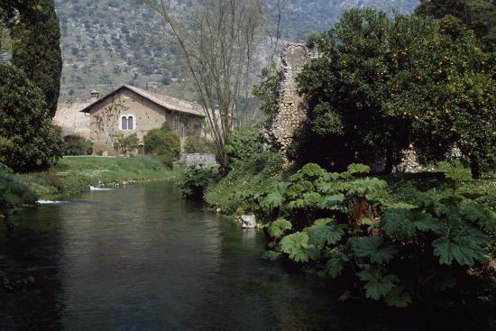 River Ninfa, Gardens of Ninfa, Cisterna Di Latina, Rome, Lazio, Italy--Photographic Print