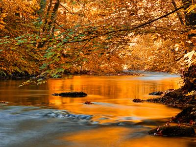 River Of Dreams Photographic Print Philippe Sainte Laudy Art Com