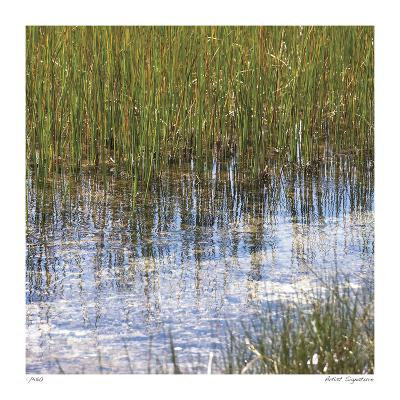 River Reeds I-Joy Doherty-Giclee Print