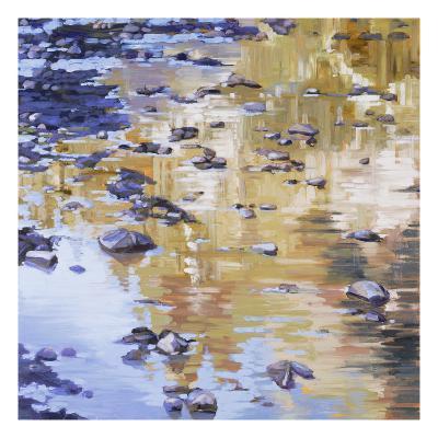 River Rocks & Reflections-Sarah Waldron-Premium Giclee Print