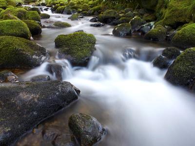 https://imgc.artprintimages.com/img/print/river-teign-dartmoor-national-park-devon-england-united-kingdom-europe_u-l-pfv7iy0.jpg?p=0
