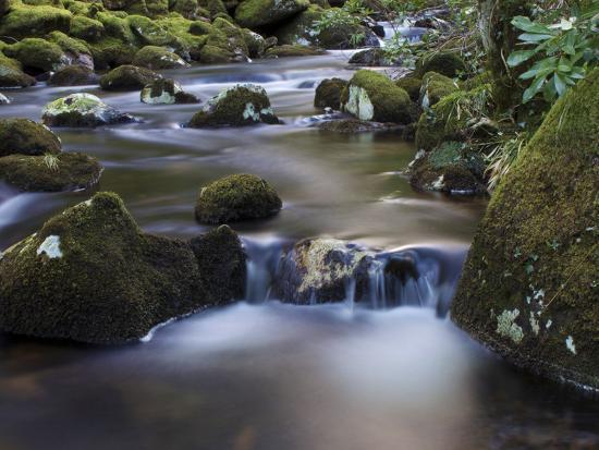 River Teign, Dartmoor National Park, Devon, England, United Kingdom, Europe-Jeremy Lightfoot-Photographic Print
