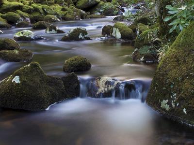 https://imgc.artprintimages.com/img/print/river-teign-dartmoor-national-park-devon-england-united-kingdom-europe_u-l-pfv7k00.jpg?p=0